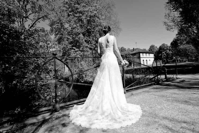 Seeschloss Monrepos Hochzeit