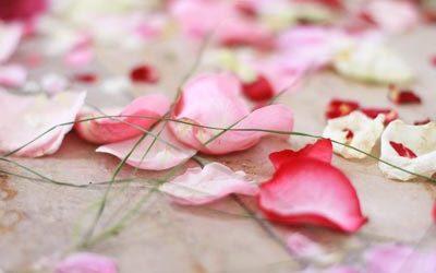 Momente Eurer Hochzeit – Bilder Eures Lebens