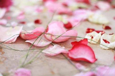 Foto Hochzeit Blüten