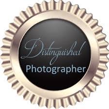 hochzeitsfotograf stuttgart wolfgang sperl distinguished photographer