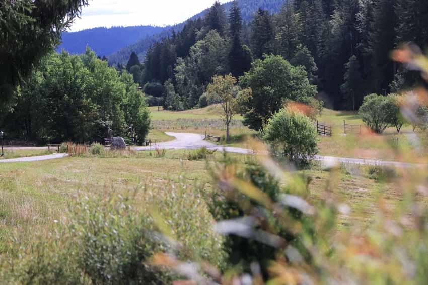 forellenhof buhlbach hochzeit