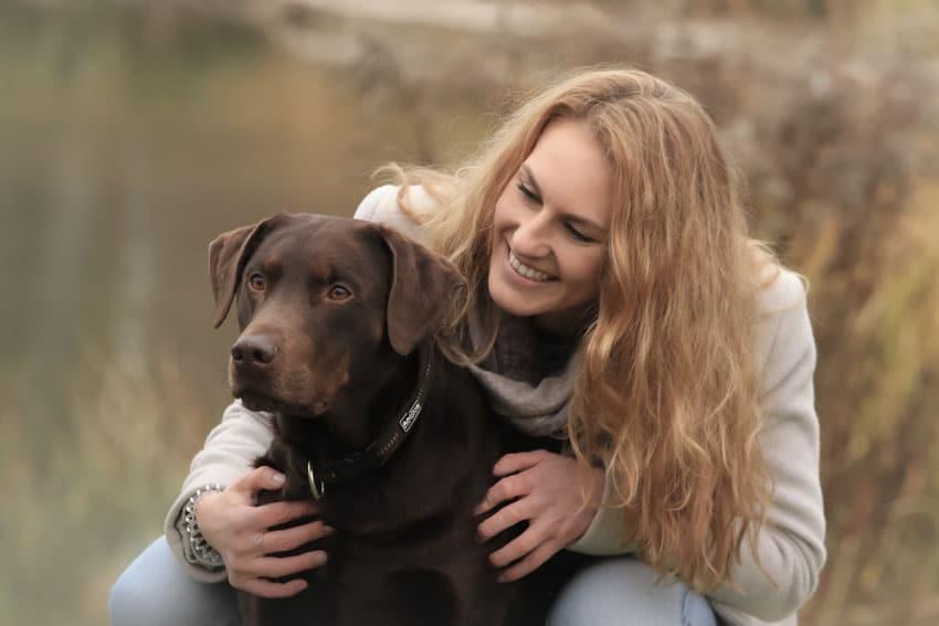 hundefotograf stuttgart